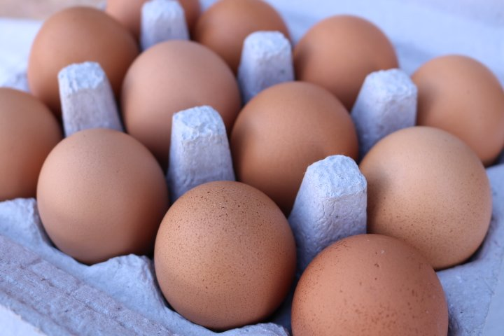 Santa Fe Farmers Market Eggs